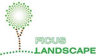 ficus landscape
